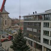 Halle: Der Weihnachtsbaum wird vor den Stadtwerken aufgebaut.